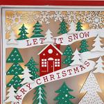Contents: PIONEER-EFFORT Christmas Wooden Advent Calendar 2020