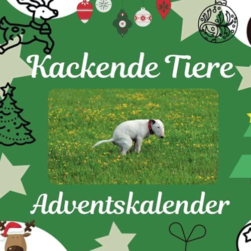 Kackende Tiere: Adventskalender