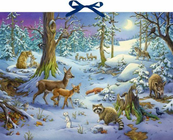 """Sound-Adventskalender """"Hört ihr die Tiere im Winterwald?"""""""