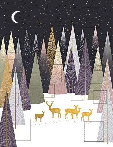 The Art File Adventskalender 2020 Waldhirsch von Sara Miller, großer traditioneller Adventskalender mit Umschlag